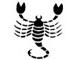 wp-horoscopo-escorpiao