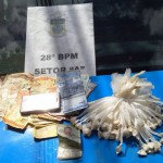 Material apreendido: cocaína e dinheiro (foto: cedida pela PM)