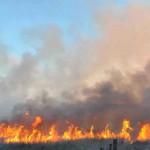 Mapeado:  Governo do Estado reconhece áreas de maior risco de incêndio (foto:Arquivo)