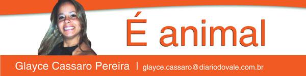 5 - wp-coluna-animal-glayce-cassaro-pereira