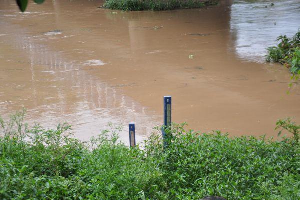 Monitorado: Nível do Rio Paraíba do Sul subiu na última semana mas já caiu bruscamente nos últimos dias (Foto: Melissa Carísio)