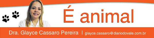 wp-coluna-animal-glayce-cassaro-pereira