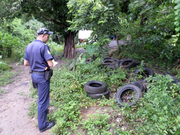 Limpeza: Pneus abandonados também foram removidos de ruas, praças, calçadas e terrenos (Foto: Cedida pela Guarda Municipal)