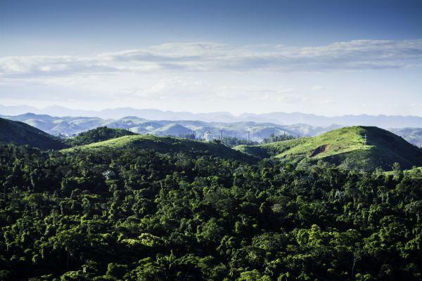 No meio: Área de mata atlântica localizada entre Volta Redonda e barra Mansa gera polêmica (Foto: Divulgação)