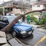 Em fevereiro: Árvore cai em cima de um carro no bairro Conforto, em Volta Redonda (Foto: Paulo Dimas - 25/02/2016)