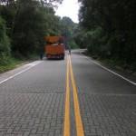 Estrada: Traçado da rodovia está totalmente inserido na área do Parque Nacional da Serra da Bocaina (Foto: Divulgação/Governo do Estado-RJ)