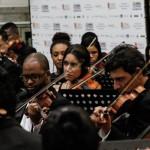 Experiência: Execução das nove sinfonias de Beethoven apresenta amadurecimento musical da OSBM (Foto: Fabrício Rezende/Divulgação)
