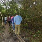 No local: Escolas e grupos diversos podem agendar visitas às trilhas (Foto: Ascom/IFRJ)