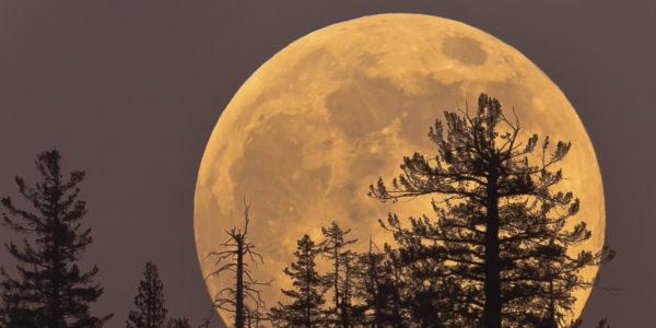 Bela: Perto do horizonte a lua parece ainda maior