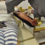 Um doador pode salvar até três vidas, segundo coordenadora do hemonúcleo (foto: Franciele Bueno)