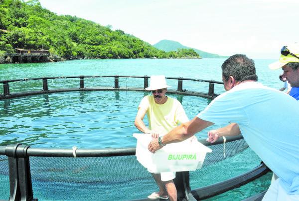 Melhoria: Luiz Sérgio esteve na entrega dos equipamentos que irão permitir a ampliação do cultivo do peixe na Enseada do Bananal, na Ilha Grande (Foto: Divulgação PMAR/Felipe de Souza)