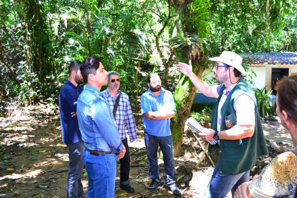 Natureza: Horto Florestal é uma Área de Proteção Ambiental (APA), com 136 hectares de terra (Foto: Divulgação)