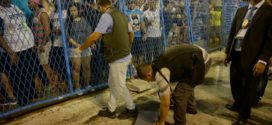 Liesa vai tomar medidas para que acidentes não voltem a ocorrer no Sambódromo