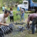Colocando em ordem: Mais de 20 caminhões com entulhos de restos de galhos e folhas secas foram retirados do local (Foto: Paulo Dimas)