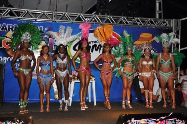 Além dos ensaios: Programação contará com o tradicional concurso de Rainha e Rainha Gay do Carnaval (Foto: Divulgação)