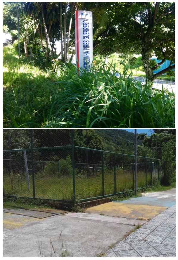 Estado de abandono: Mato alto chama atenção nas praças dos bairro São João e Ilha Parque (Fotos: Enviadas pelo WhatsApp)