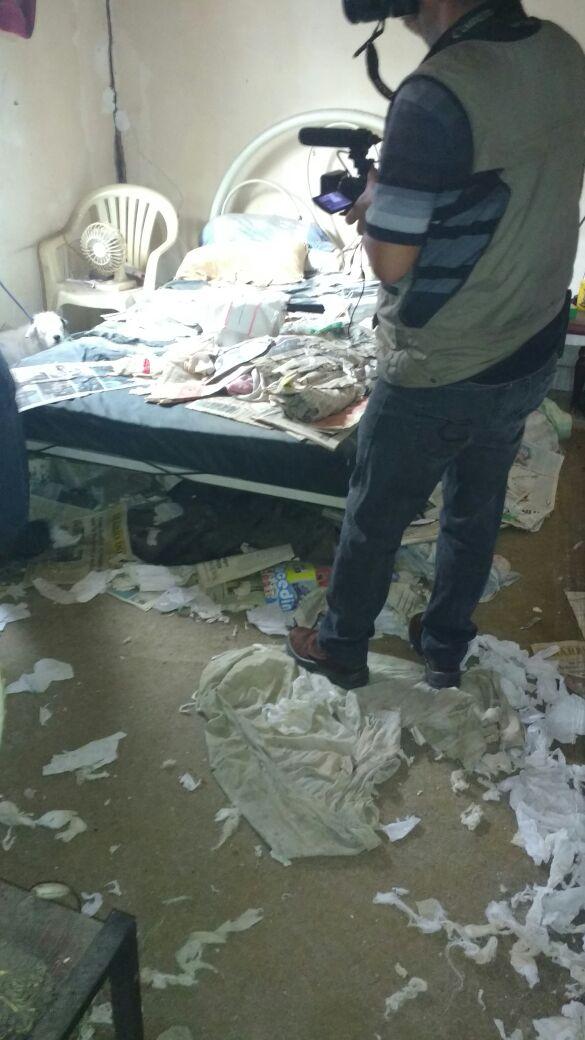 Papéis picados e jornais forravam a casa onde ficavam os cães (Foto: Cedida pela Polícia Civil)