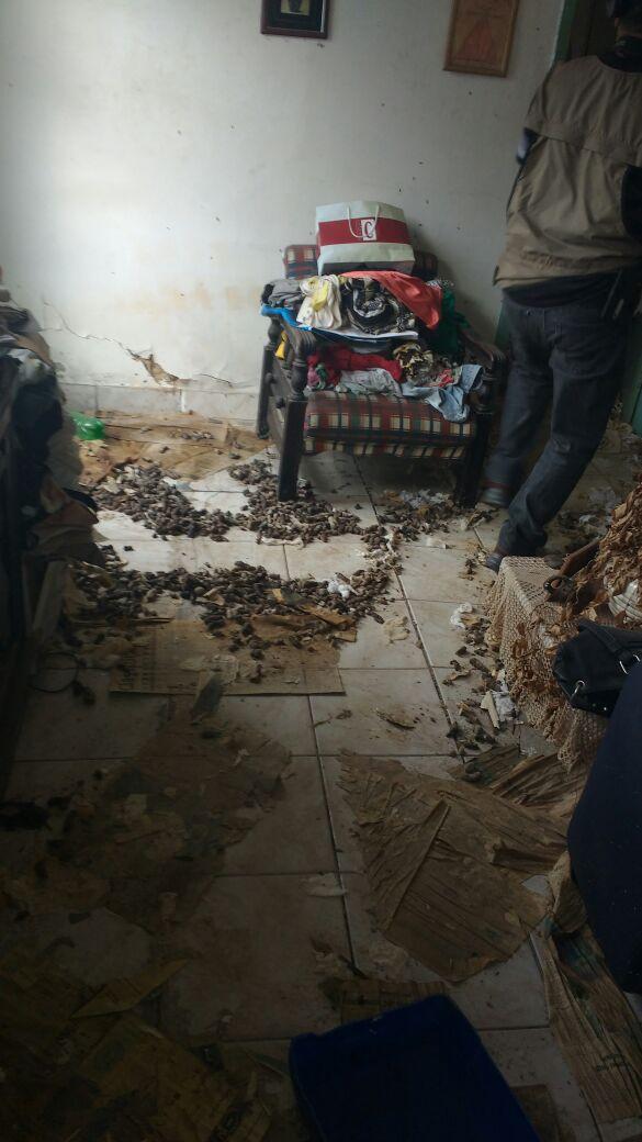 Fezes estavam espalhadas por toda a casa (Foto: Cedida pela Polícia Civil)