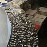 Ilícito: Mais de 400 sacolés de cocaína, tabletes da mesma droga, maconha e fracos de 'Cheirinho da Loló' foram levados para a delegacia (Cedida pela Polícia Militar)