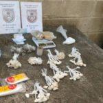 Material foi apreendido na casa das suspeitas em Barra do Piraí (foto: Cedida pela PM)
