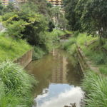 Como o Rio Brandão é urbano ele pega muita descarga de esgoto (foto: Julio Amaral)