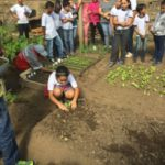'Mãos a Horta': Alunos fazem o plantio e manutenção das hortaliças, apreendendo técnicas ambientais e agropecuárias (Foto: Divulgação/Ascom PMP)