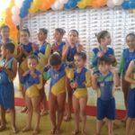 Ginástica olímpica: Evento marca o oferecimento gratuito de mais uma nova modalidade para crianças e jovens do município (Foto: Divulgação/Ascom PMP)