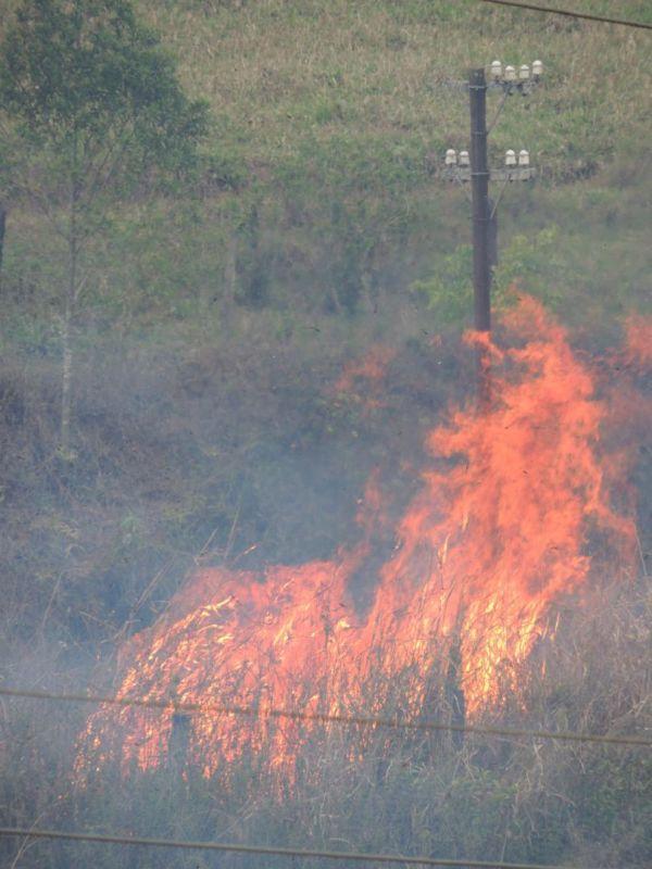 Alerta: Queimadas costumam aumentar na época da seca, que normalmente vai de junho a novembro (Foto: Divulgação/Ascom PMQ)