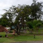 Programa será semelhante ao que já vem sendo realizado com sucesso no Parque Tobogã
