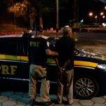 Caminhoneiro suspeito foi detido após furar bloqueio da PRF
