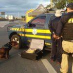 Homem de 60 anos foi preso na ação; ele disse que teria pegado mala com conhecido no Terminal Rodoviário do Tietê, em São Paulo (Foto: Cedida pela Polícia Rodoviária Federal)
