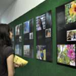 'Além da Visão': Mostra é composta por mais de 40 fotografias, todas com legendas também em braile (Fotos: Divulgação)