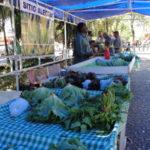Orgânico: Mercado será criado perto da Praça da Chaminé em Volta Redonda (Foto: Júlio Amaral)