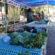 Cadastro para mercado orgânico seleciona 15 candidatos em Volta Redonda