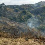 Fogo: Sem chuva há mais de um mês o tempo seco é que vem contribuindo para alta (Foto: Paulo Dimas)