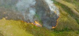Incêndio na Serra da Bocaina é controlado após destruir 1,2 mil hectares