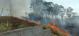 Angra dos Reis lança campanha de combate às queimadas na estiagem