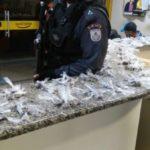 drogas paulo de frontin