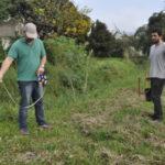 Meio Ambiente: Foram plantadas 120 mudas de espécies nativas (Foto: Divulgação)