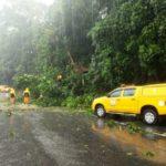 Perigos: Chuvas já causaram estragos como queda de árvores e deslizamento de rocha na Rio-Santos (Foto: Divulgação/Ascom PMAR)