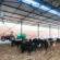 Novo sistema de produção promete aumentar oferta de leite em Barra Mansa