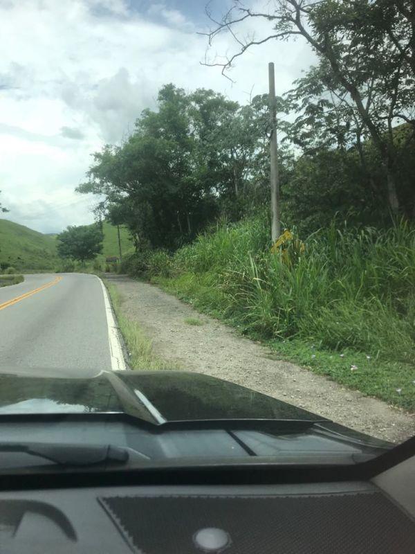 Ruim: Com mato alto e sinalização precária, situação RJ-155 preocupa motoristas (Foto: Enviada via WhatsApp)