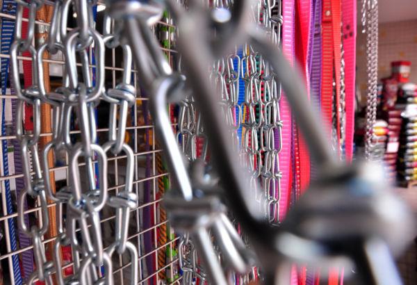 Mercado pet: Coleiras e guias são os itens mais procurados (Foto: Filipe de Souza)