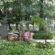 Preocupação com a febre amarela deixa Parque Centenário em alerta