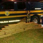 Policiais utilizam cães farejadores para apreender drogas em onibus