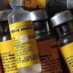 Angra dos Reis tem 14 mortes por febre amarela - Arquivo