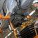Fabricantes de veículos da região têm alta nas vendas no mercado interno