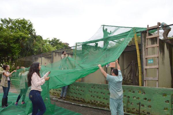 Cerca: Medida tem caráter preventivo e visa inibir aproximação de mosquitos - Evandro Freitas