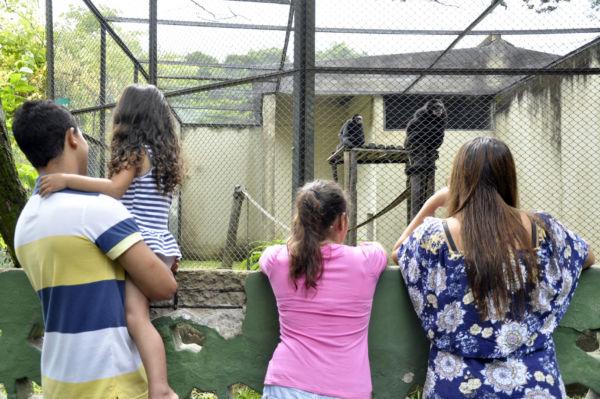 Diversão variada na folia: Zoológico Municipal de Volta Redonda tem cerca de 400 animais (Foto: Divulgação)