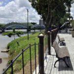 Calçadão Dama do Samba: Programação terá atividades esportivas, culturais e que movimentam a economia do município (Foto: Paulo Dimas)